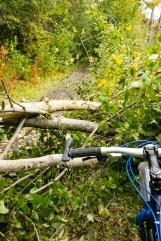 eklutna fat tire bike ride septebmer 2017-2301