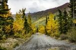 eklutna fat tire bike ride septebmer 2017-2349